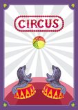 Template design for circus poster. stock illustration