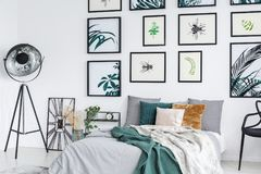 Posters with plants and bugs. Small posters with plants and bugs hanging on white wall in simple bedroom royalty free stock photography