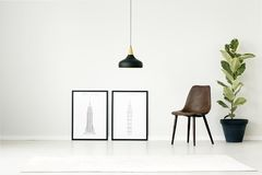 Posters in simple living room. Brown chair between posters and plant against white wall with copy space in simple living room interior with black lamp above rug Stock Image