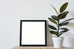 Posters square format in black frame in white stylish modern interior on shelf, living room. Design template mockup.  stock images