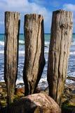 Postes de madera Imagen de archivo libre de regalías