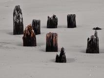 Postes de madera en la playa Imágenes de archivo libres de regalías