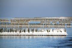 Postes de madera helados en el océano imágenes de archivo libres de regalías