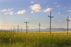 Postes eléctricos en un campo - Helena Fotos de archivo
