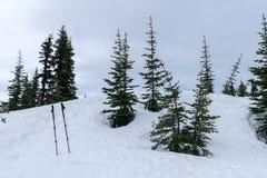Postes en la nieve Imagen de archivo