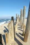 Postes erosionados en la playa. Foto de archivo libre de regalías