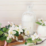 Postkarte mit Apfelblüte, dekorativer Vogel, alte Bücher, Kerzen Stockbilder