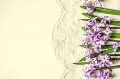 Postkarte mit den lila Hyazinthen, die auf der Seite liegen Lizenzfreie Stockfotografie
