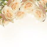 Postkarte mit eleganten Blumen Stockbild