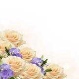 Postkarte mit eleganten Blumen und leerer Platz für Ihren Text Lizenzfreies Stockbild