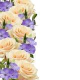 Postkarte mit eleganten Blumen und leerer Platz für Ihren Text Lizenzfreie Stockbilder