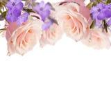 Postkarte mit eleganten Blumen und leerer Platz für Ihren Text Stockbild