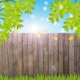 Postkarte mit frischem Frühlingslaub und leerer Platz für Ihr tex Stockfotografie