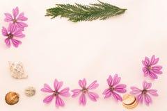 Postkarte mit leerem Platz für Aufschrift von zerstreuter rosa Inspektion Lizenzfreie Stockbilder