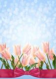 Postkarte mit Tulpen der frischen Blumen und leerer Platz für Ihr te Stockfotografie