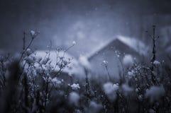 Postkartenfoto des Schnees fallend in Winter Stockfotografie
