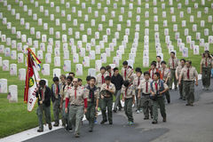 Posto 85, 000 bandiere all'evento annuale di Memorial Day, cimitero nazionale di Los Angeles, California, U.S.A. di boy-scout deg Fotografie Stock
