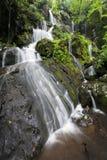 Posto del parco nazionale di Great Smoky Mountains di mille gocciolamenti fotografie stock