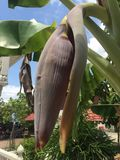 Posto della pagoda fotografie stock