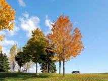 Posto di autunno Fotografia Stock