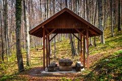 Posto di campeggio nella foresta fotografia stock