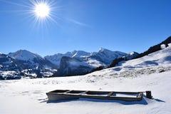 Posto di innaffiatura congelato per le mucche alle alpi svizzere Immagini Stock