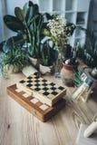 Posto di lavoro dello studio con le scacchiere, gli strumenti artistici del lavoro e le piante verdi Fotografia Stock