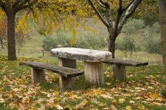 Posto di picnic in una foresta Immagini Stock