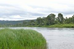 Posto di una confluenza di due fiumi Fotografia Stock