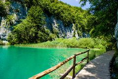Posto idilliaco nel parco nazionale in Croazia Immagini Stock