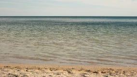 Posto perfetto per le vacanze estive Spuma e nuotata stock footage