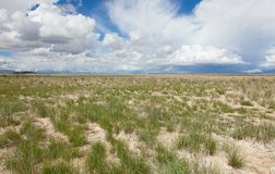 Posto senza vita del deserto Fotografie Stock Libere da Diritti