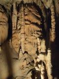 Postojna Cave Royalty Free Stock Image