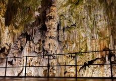 Postojna grotta, en av de bästa turismplatserna i Slovenien Arkivfoton
