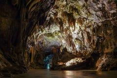 Postojna grotta, en av de bästa turismplatserna i Slovenien Royaltyfri Bild