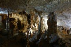 Postojna grotta, Slovenien, Europa royaltyfri foto