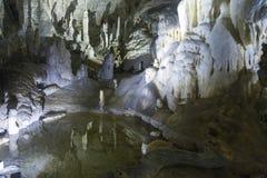 Postojna grotta, Slovenien, med stalaktit och stalagmit arkivbild