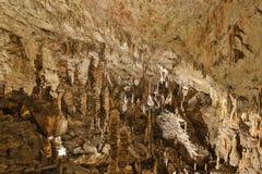 Postojna-Höhle, Slowenien Bildungen innerhalb der Höhle mit Stalaktiten lizenzfreie stockfotografie