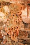 Postojnska jama|洞|Grotte 免版税库存照片