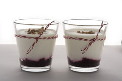 Postre acodado con el yogur y el queso cremoso de frutas en el tarro de cristal Imagen de archivo