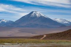 Postre de Atacama Foto de archivo libre de regalías