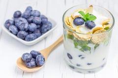 Postre del yogur con el arándano, el kiwi y los cereales Foto de archivo libre de regalías