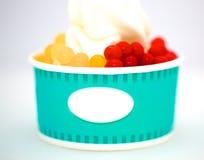 Postre del yogur del helado Fotografía de archivo
