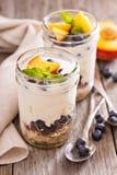 Postre helado acodado del desayuno con el granola y las frutas Foto de archivo libre de regalías