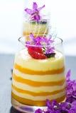 Postre helado del yogur Fotos de archivo libres de regalías