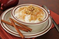 Postre helado del yogur de la manzana del canela Imagen de archivo libre de regalías