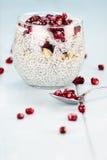 Postre helado delicioso de Chia Seed y de la granada Fotografía de archivo