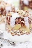 Postre helado rojo delicioso de la quinoa Imagen de archivo libre de regalías