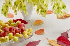 Postre a partir del otoño Fotografía de archivo