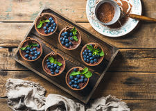 Postre y tamiz hechos en casa del Tiramisu con el polvo de cacao en bandeja Imagen de archivo libre de regalías